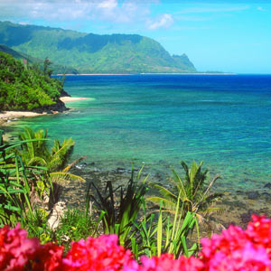 Hawaiian Massage Practitioner Training